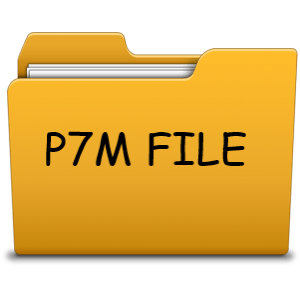 Files signed with p7m